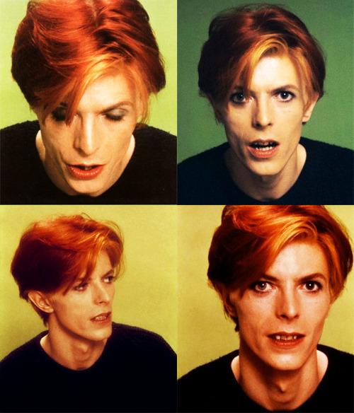 David-Bowie-david-bowie-14371479-500-584
